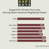 Infographic: Support for Stricter Gun Laws